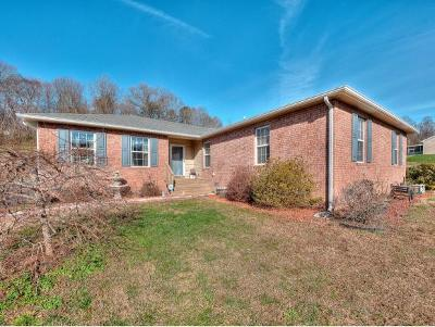 Blountville Single Family Home For Sale: 664 Cross Community Rd.
