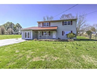 Rogersville Single Family Home For Sale: 245 Arrington Road