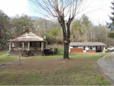 Rogersville Single Family Home For Sale: 1257 Pressmens Home Road