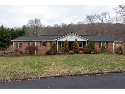 Kingsport Single Family Home For Sale: 5509 Osceola Drive