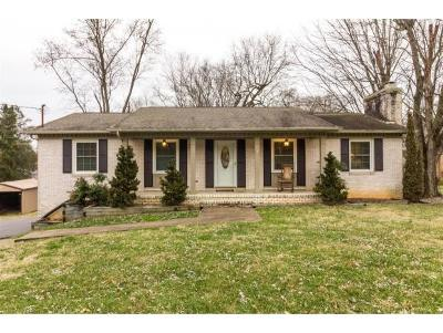Kingsport Single Family Home For Sale: 905 Edgewood Circle