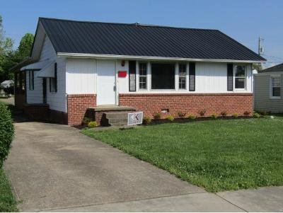 Kingsport Single Family Home For Sale: 329 Carver Street