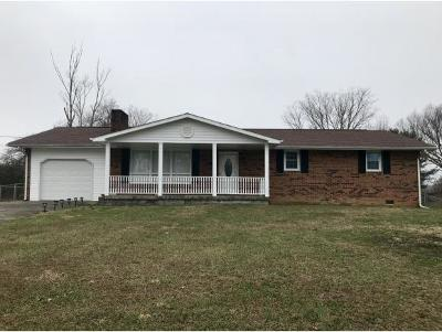 Kingsport Single Family Home For Sale: 515 Hill Road