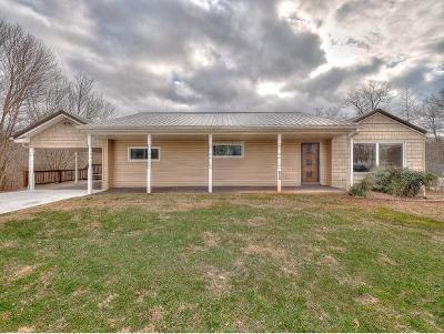 Kingsport Single Family Home For Sale: 628 Rock Springs Dr