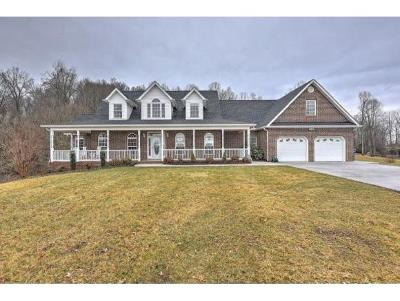 Blountville Single Family Home For Sale: 553 Bowman Creek