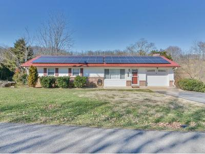 Kingsport Single Family Home For Sale: 308 Merman Rd