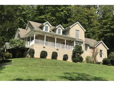 Unicoi Single Family Home For Sale: 125 Lake View Drive