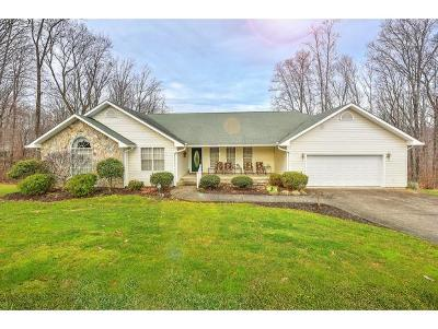 Unicoi Single Family Home For Sale: 321 Golf Course Road