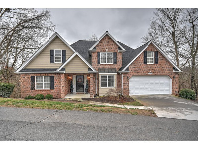 Kingsport Single Family Home For Sale: 159 Aston