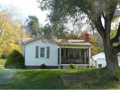 Fall Branch Single Family Home For Sale: 1415 Hwy 93 North
