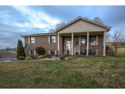 Kingsport Single Family Home For Sale: 292 Blakley Drive