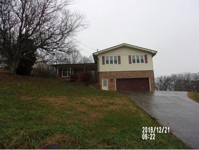 Kingsport Single Family Home For Sale: 1608 Sky View Dr