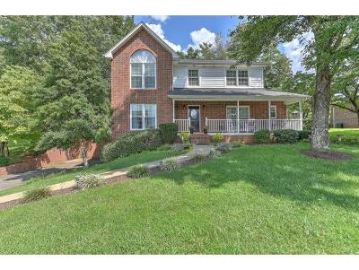 Kingsport Single Family Home For Sale: 1068 Timberidge Trail