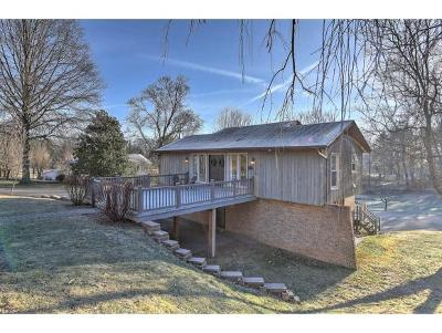 Abingdon Single Family Home For Sale: 124 Hillside