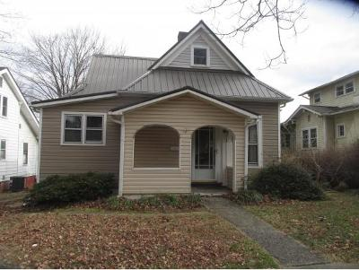 Johnson City Single Family Home For Sale: 220 East Holston