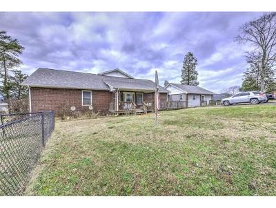 Single Family Home For Sale: 119 Chief Lane