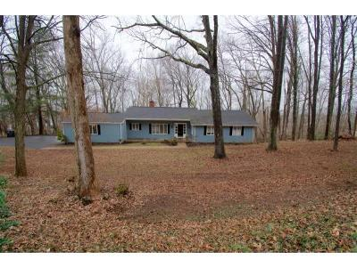Kingsport Single Family Home For Sale: 4514 Mitchell Rd.