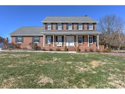 Kingsport Single Family Home For Sale: 624 Snapps Ferry Road