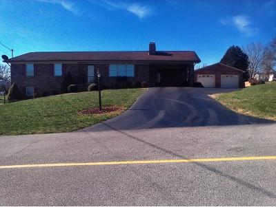 Greeneville TN Single Family Home For Sale: $241,900