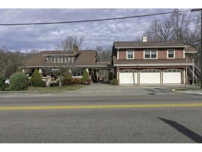Damascus VA Single Family Home For Sale: $479,000