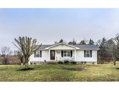 Greeneville Single Family Home For Sale: 134 Shane St.