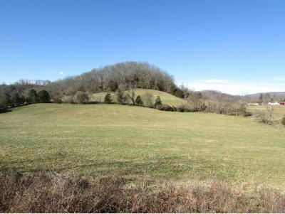 Residential Lots & Land For Sale: Lot 10 Old Charity Hill Road