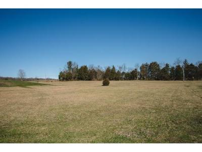 Residential Lots & Land For Sale: Lot 16 Cimarron Trail