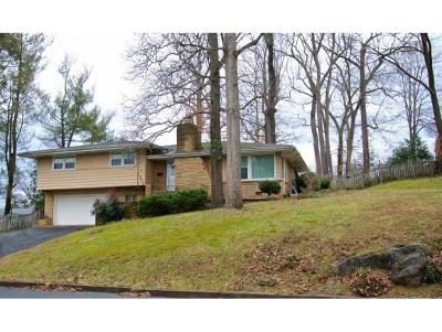 Johnson City Single Family Home For Sale: 1200 Woodmont Dr.