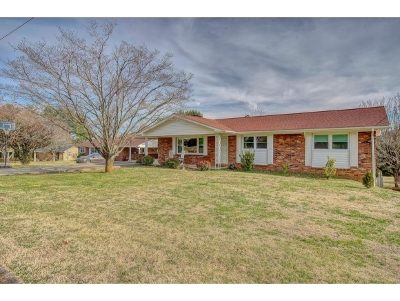 Johnson City Single Family Home For Sale: 211 Haynes Drive