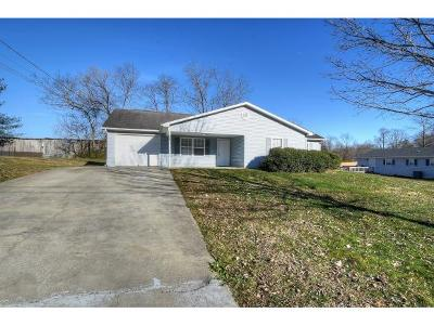 Johnson City Single Family Home For Sale: 1005 Rocky Ridge Road