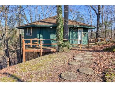 Johnson City Single Family Home For Sale: 145 King Drive