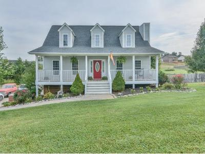 Single Family Home For Sale: 400 Walkers Bend