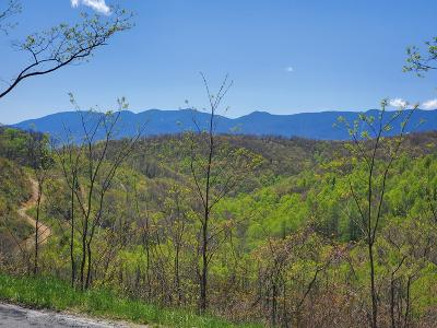 Lots and Land For Sale: TBD Emerald Mine Rd