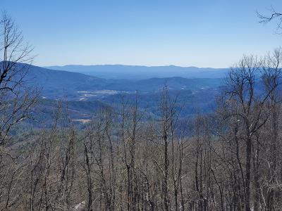 Lots and Land For Sale: TBD Osborne Knob Rd