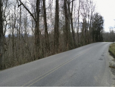Washington-Tn County Residential Lots & Land For Sale: TBD Green Pond Rd