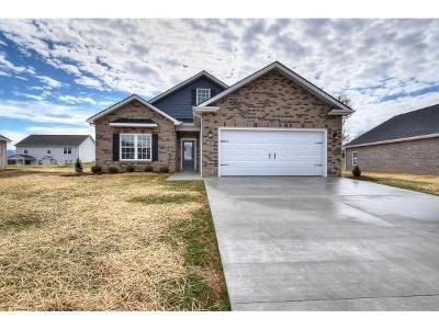 Piney Flats Single Family Home For Sale: 1137 Osler Ct