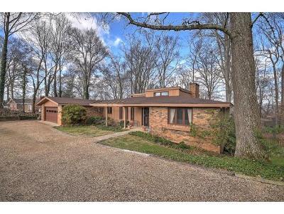 Kingsport Single Family Home For Sale: 4220 Skyland Lane