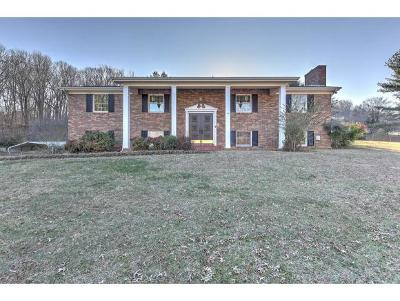 Kingsport Single Family Home For Sale: 2814 Forest View Road