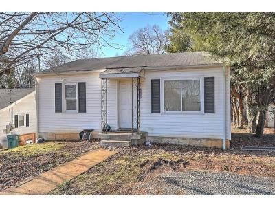 Damascus, Bristol, Bristol Va City Single Family Home For Sale: 231 Magnolia Dr