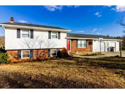 Single Family Home For Sale: 1540 Maple Hill Drive