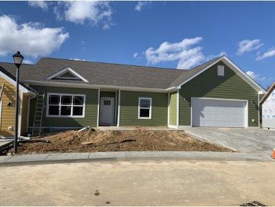 Greeneville Condo/Townhouse For Sale: 241 Radford Drive #1
