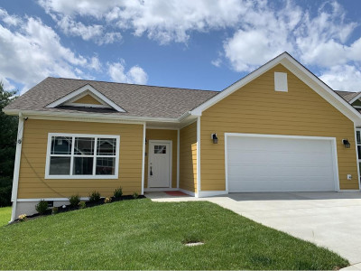 Greeneville Condo/Townhouse For Sale: 239 Radford #1