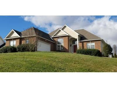 Piney Flats Single Family Home For Sale: 1844 Weaver Branch