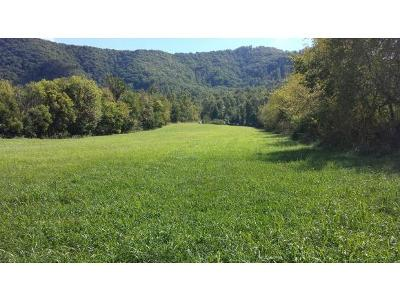Washington-Tn County Residential Lots & Land For Sale: 134 Chinquapin Ln.