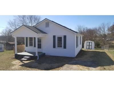 Kingsport Single Family Home For Sale: 120 Holcomb
