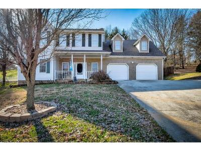 Kingsport Single Family Home For Sale: 356 Lewis Ln