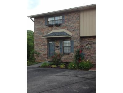 Johnson City Condo/Townhouse For Sale: 113 Colt Lane #12