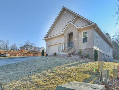 Johnson City+ TN Single Family Home For Sale: $179,900