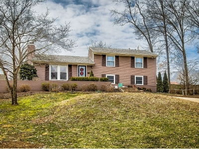 Kingsport Single Family Home For Sale: 1433 Dobyns Drive