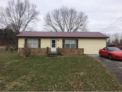 Greeneville Single Family Home For Sale: 126 Brad St.